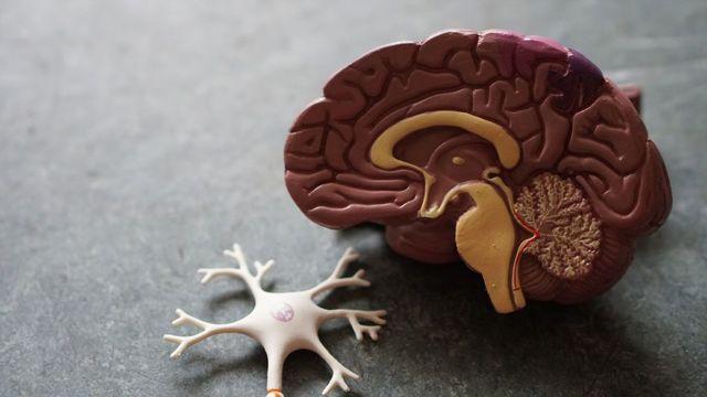 Чи може стан кишечника впливати на настрій людини?